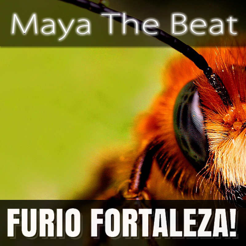 Furio Fortaleza! - 2.4 - Maya The Beat