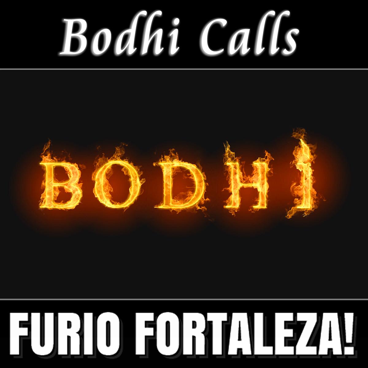 Furio Fortaleza! - 3.6 - Bodhi Calls